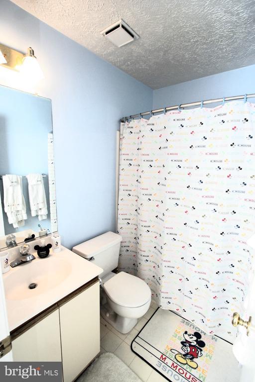 Hall Bathroom on upper level! - 13970 BIG YANKEE LN, CENTREVILLE