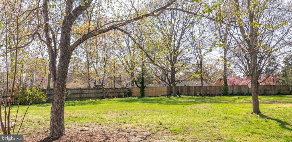 This huge backyard has so many possibilities! - 8522 CYRUS PL, ALEXANDRIA