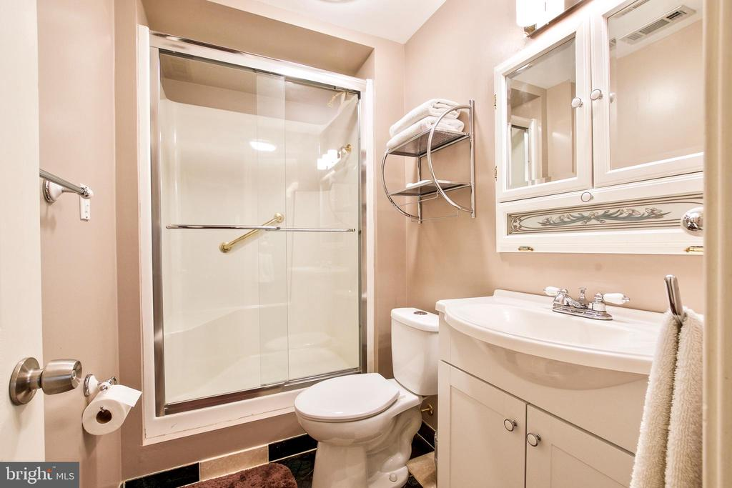 Full bath dowstairs - 20693 LONGBANK CT, STERLING