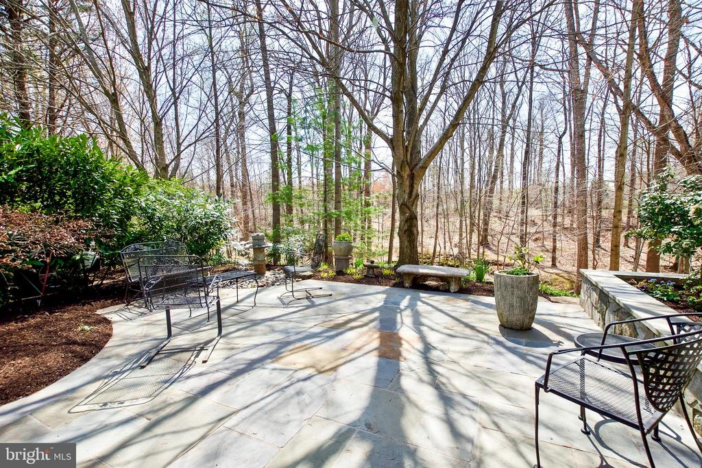 Beautiful Flagstone patio/courtyard - 20693 LONGBANK CT, STERLING