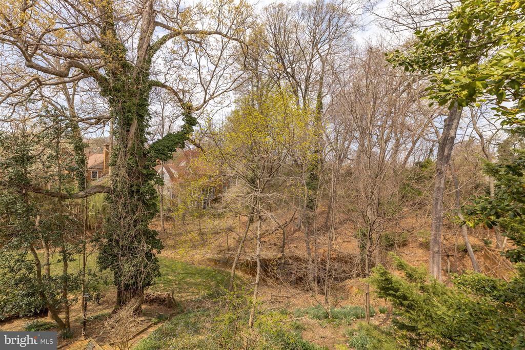 Beautiful Wooded Views - 3835 MACOMB ST NW, WASHINGTON