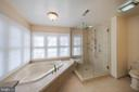 Luxurious master bath - 5207 BRAYWOOD DR, CENTREVILLE