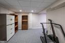 Bonus room - 5207 BRAYWOOD DR, CENTREVILLE