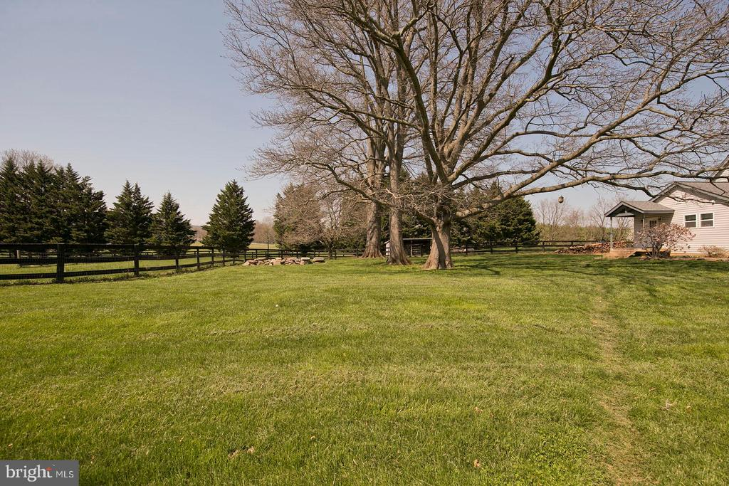 Beautiful mature trees. What a relaxing view! - 35951 ASHBY FARM CIR, HILLSBORO