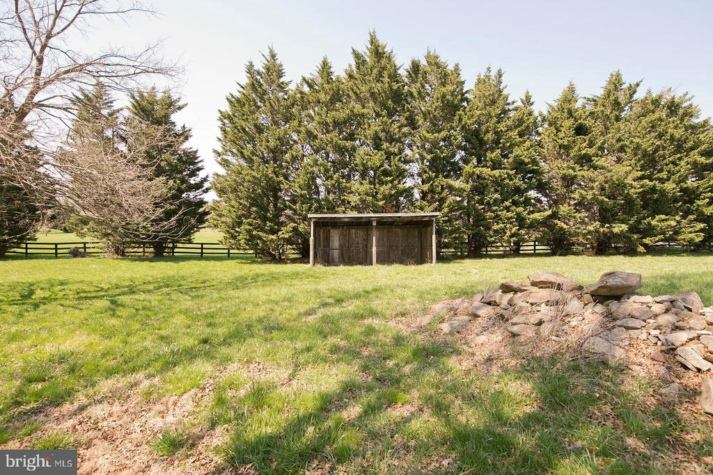 Run in shed - 35951 ASHBY FARM CIR, HILLSBORO