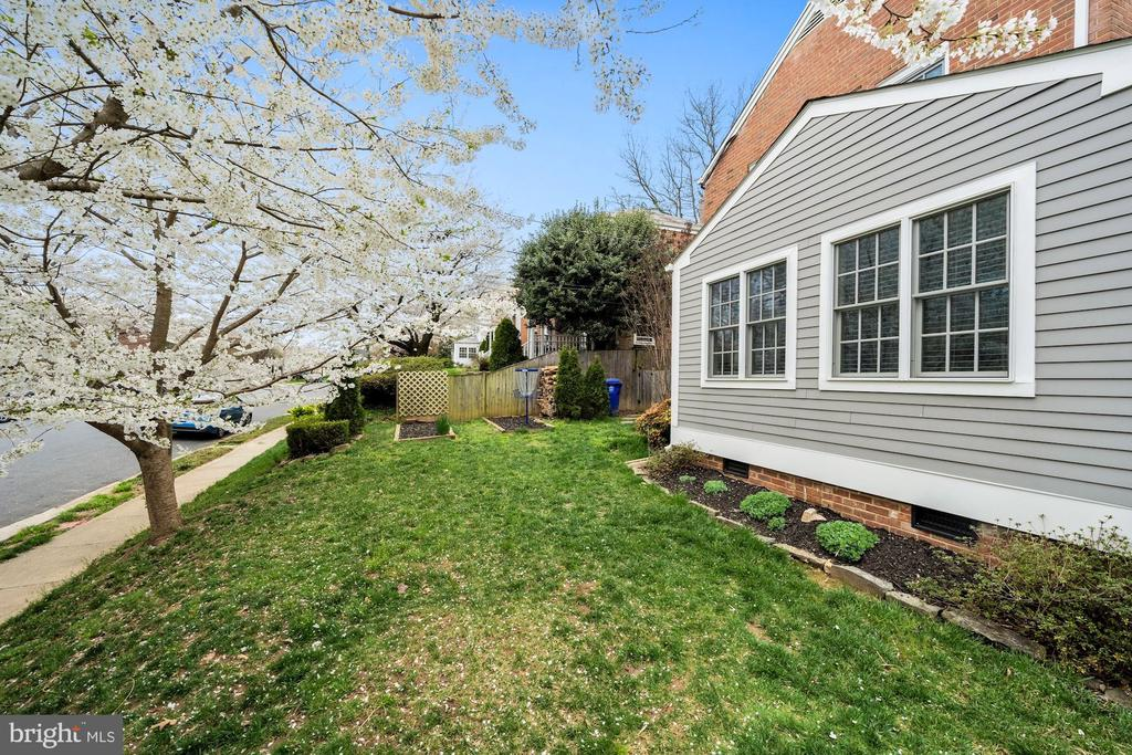 Side Yard - 1500 N KENILWORTH ST, ARLINGTON