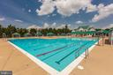 Community Pool for All Ages - 19979 BELMONT STATION DR, ASHBURN