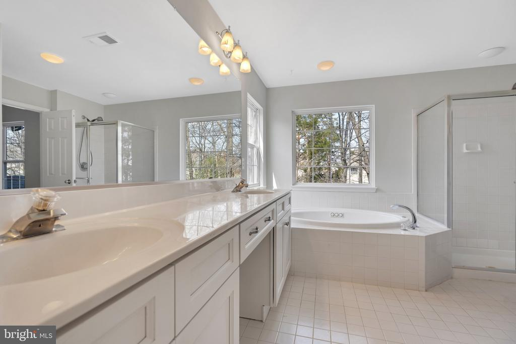 Luxury bath with couble sinks and separate shower - 43446 RANDFIELD LN, CHANTILLY