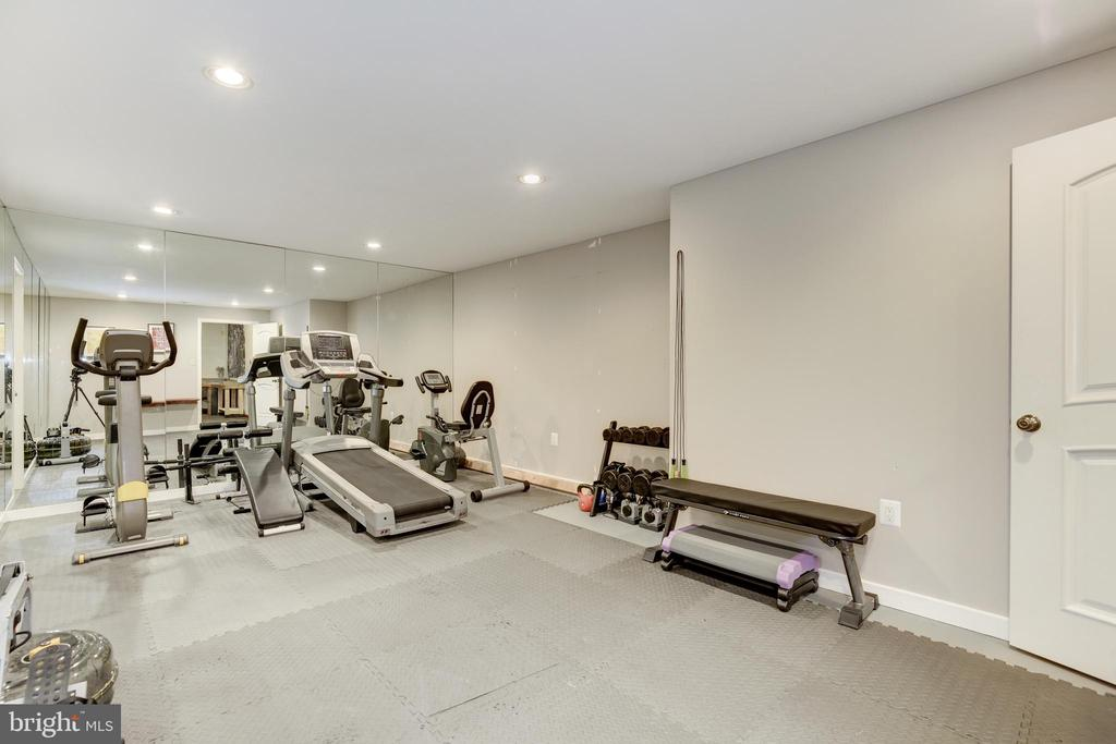 Home Gym in Finished Basement - 42969 DEER CHASE PL, ASHBURN