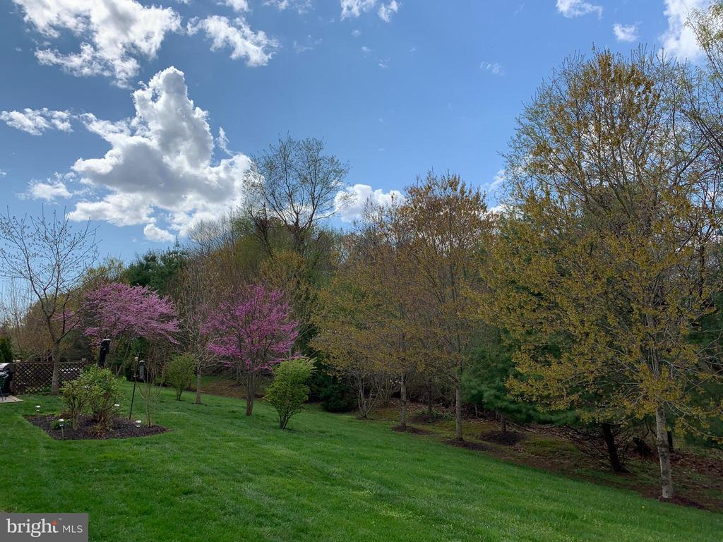 View from private patio - 63 HARPERS MILL WAY, LOVETTSVILLE