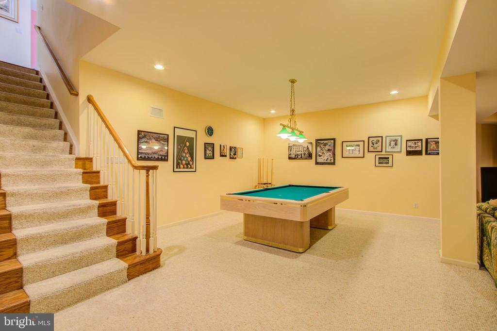 Carpeted Lower Level - 220 VIERLING DR, SILVER SPRING