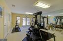 Workout Room Facing South - 220 VIERLING DR, SILVER SPRING