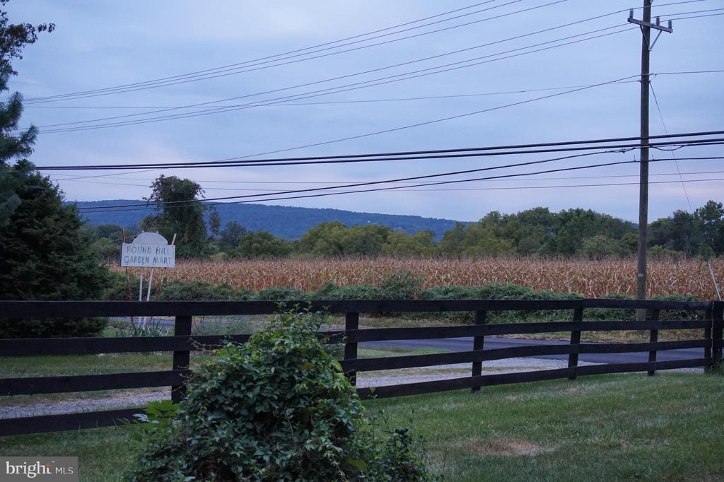 Farmland in conservation easement on two sides - 17411 LAKEFIELD RD, ROUND HILL