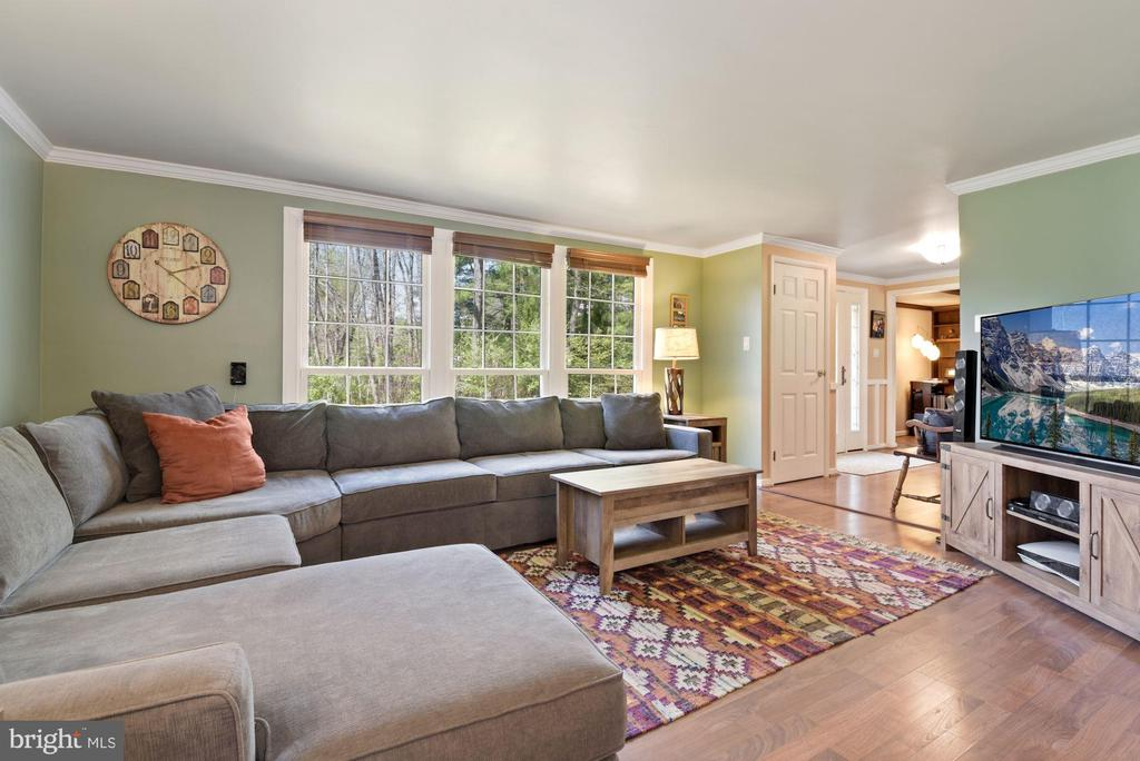 Living Room - Light, Bright, Airy, & Spacious! - 11007 HOWLAND DR, RESTON