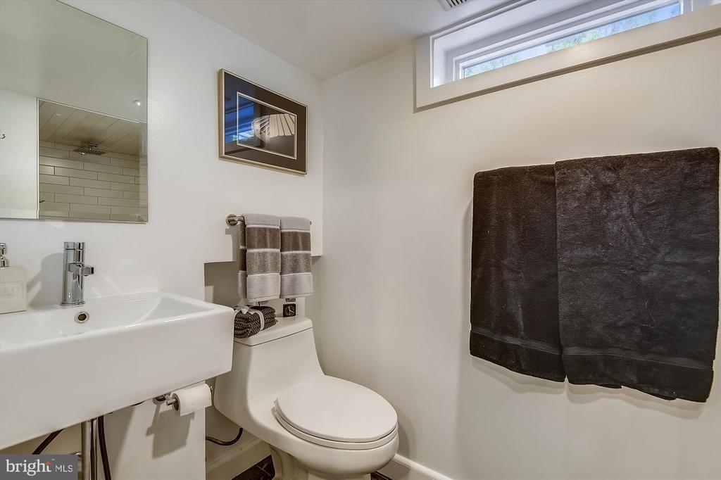 Full bath on lower level - 301 W GLENDALE AVE, ALEXANDRIA