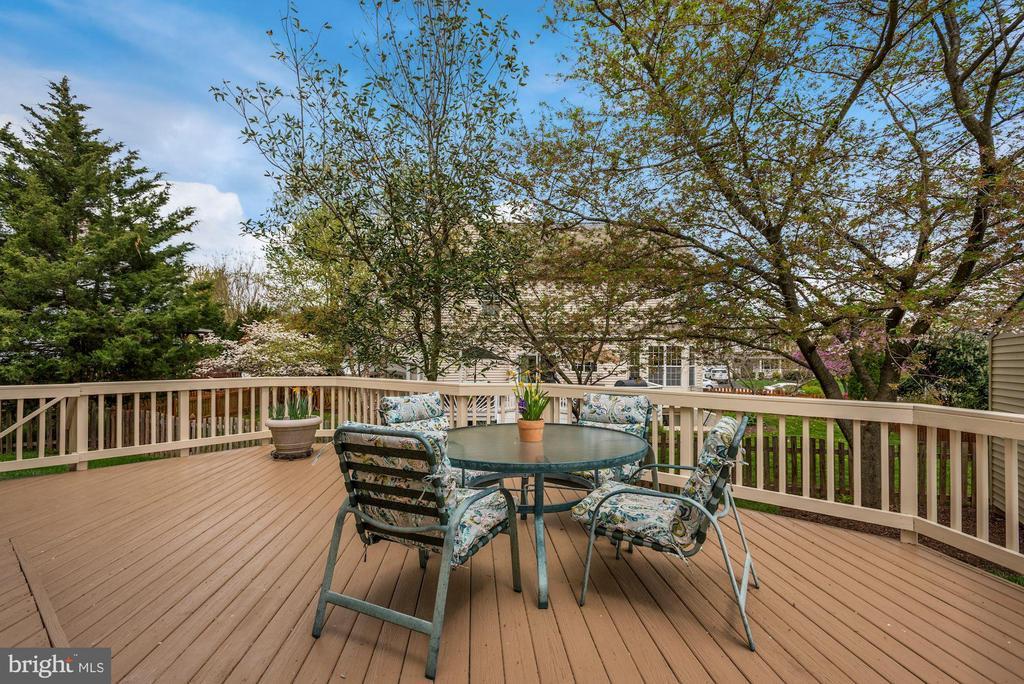 Relax in your backyard - 20642 OAKENCROFT CT, ASHBURN