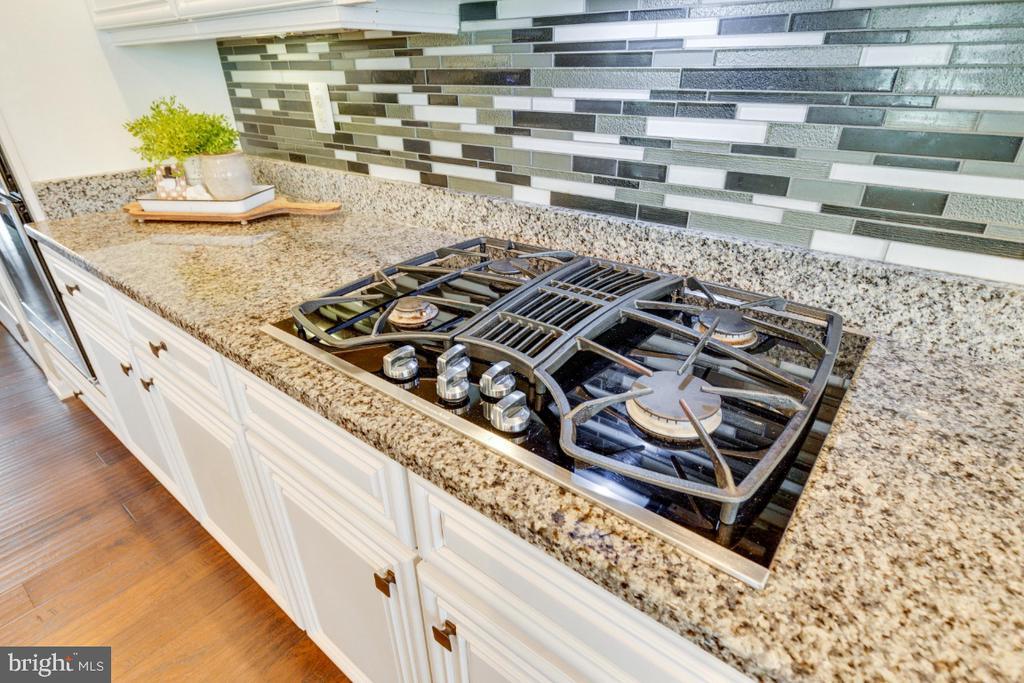 Gourmet Kitchen with Granite Counters - 24215 CRABTREE CT, ALDIE