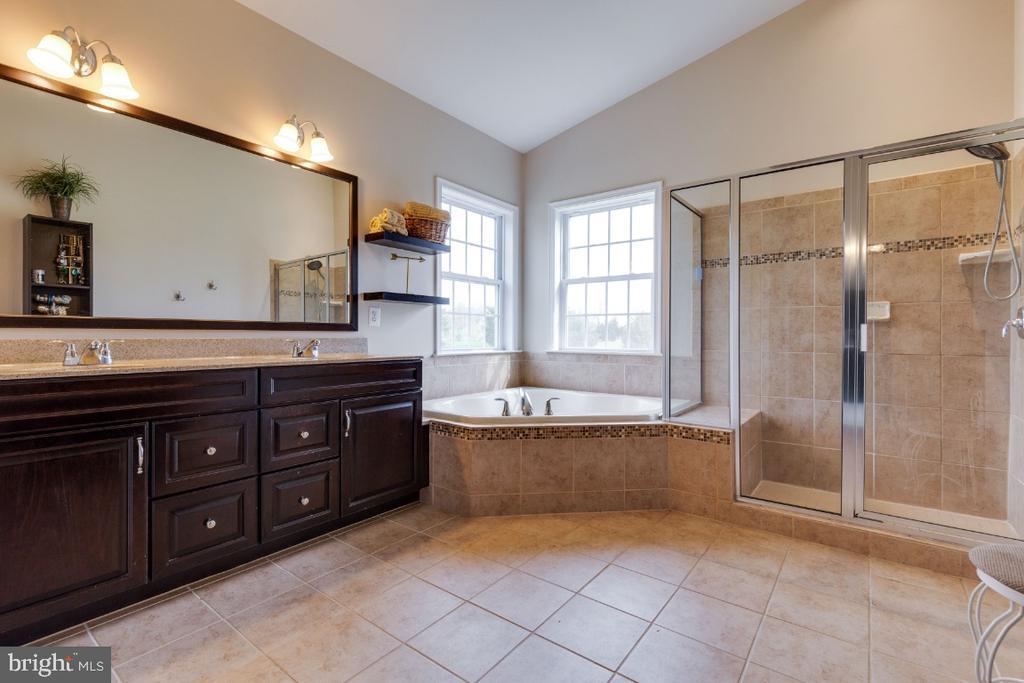Great Owners Luxury Bath - 24215 CRABTREE CT, ALDIE