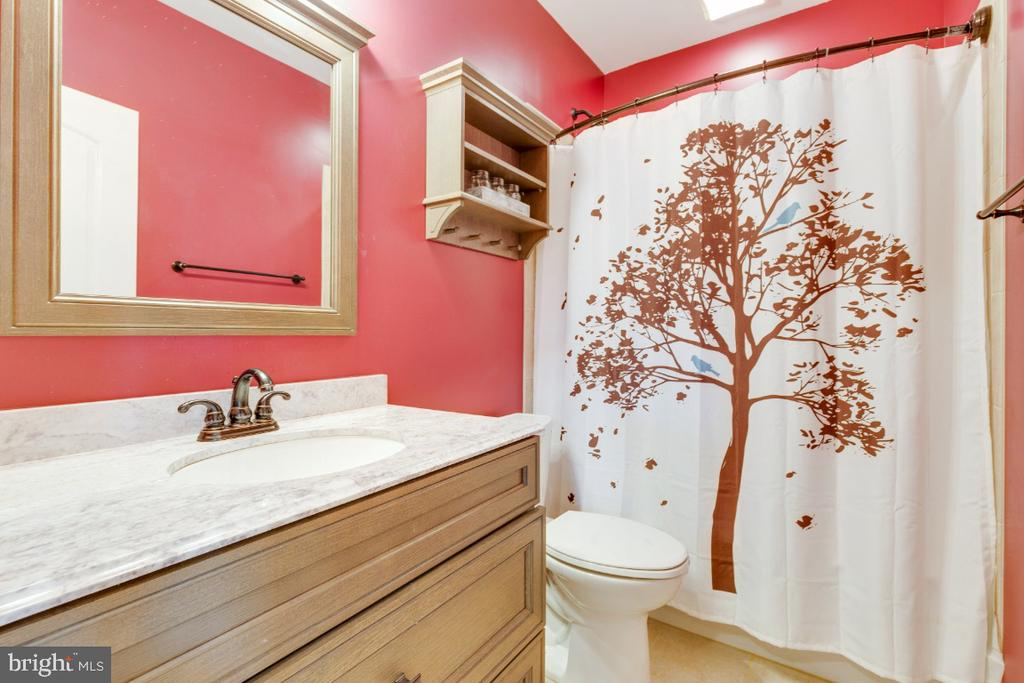 Full Bathroom on the Lower Level - 24215 CRABTREE CT, ALDIE