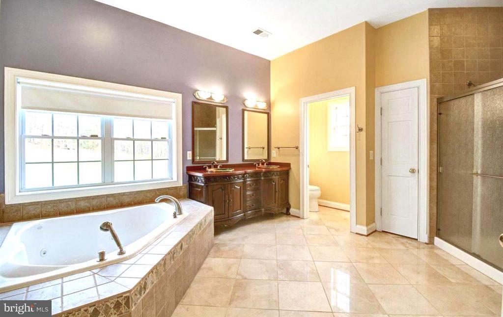 Owners Luxury Bath - 14515 SHIRLEY BOHN RD, MOUNT AIRY