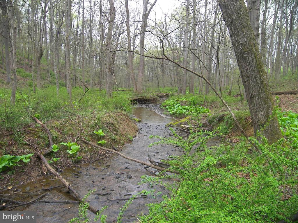 Upstream View of South Fork of Linganore Creek - 14515 SHIRLEY BOHN RD, MOUNT AIRY