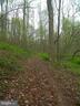 Spend The Day Enjoying the Fresh  Air - 14515 SHIRLEY BOHN RD, MOUNT AIRY