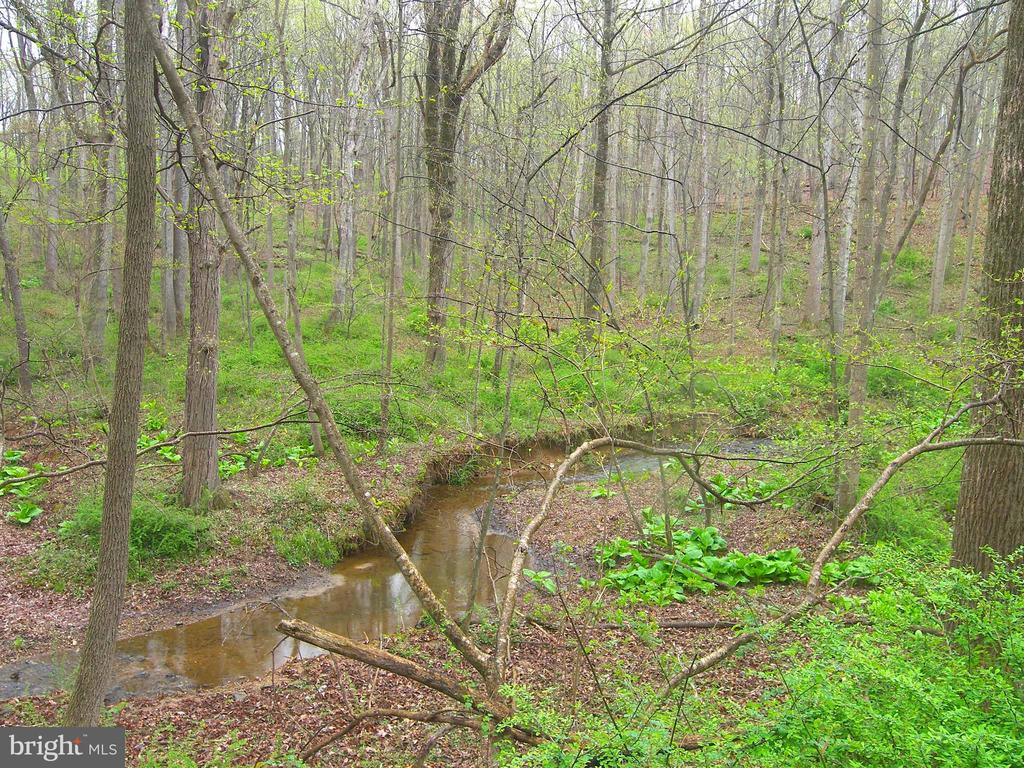 Magical Woodland View - 14515 SHIRLEY BOHN RD, MOUNT AIRY