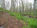 Trail Alongside Linganore Creek - 14515 SHIRLEY BOHN RD, MOUNT AIRY