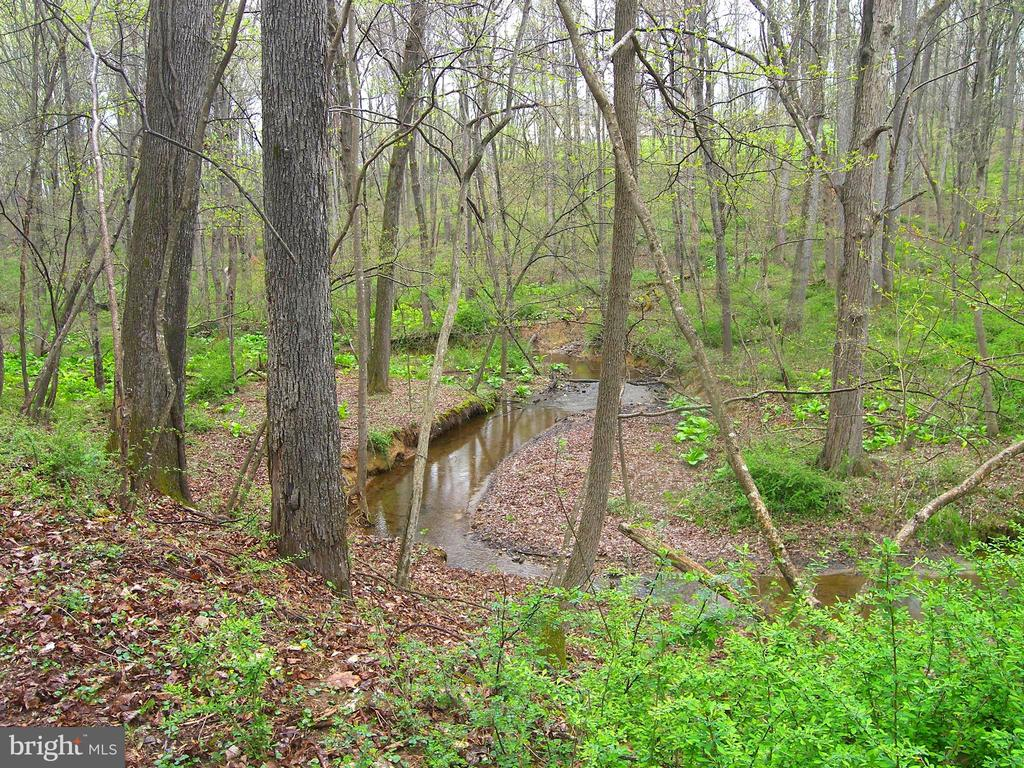 South Fork Of Linganore Creek Meanders through - 14515 SHIRLEY BOHN RD, MOUNT AIRY