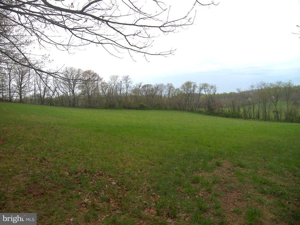 The Corner Field - 14515 SHIRLEY BOHN RD, MOUNT AIRY