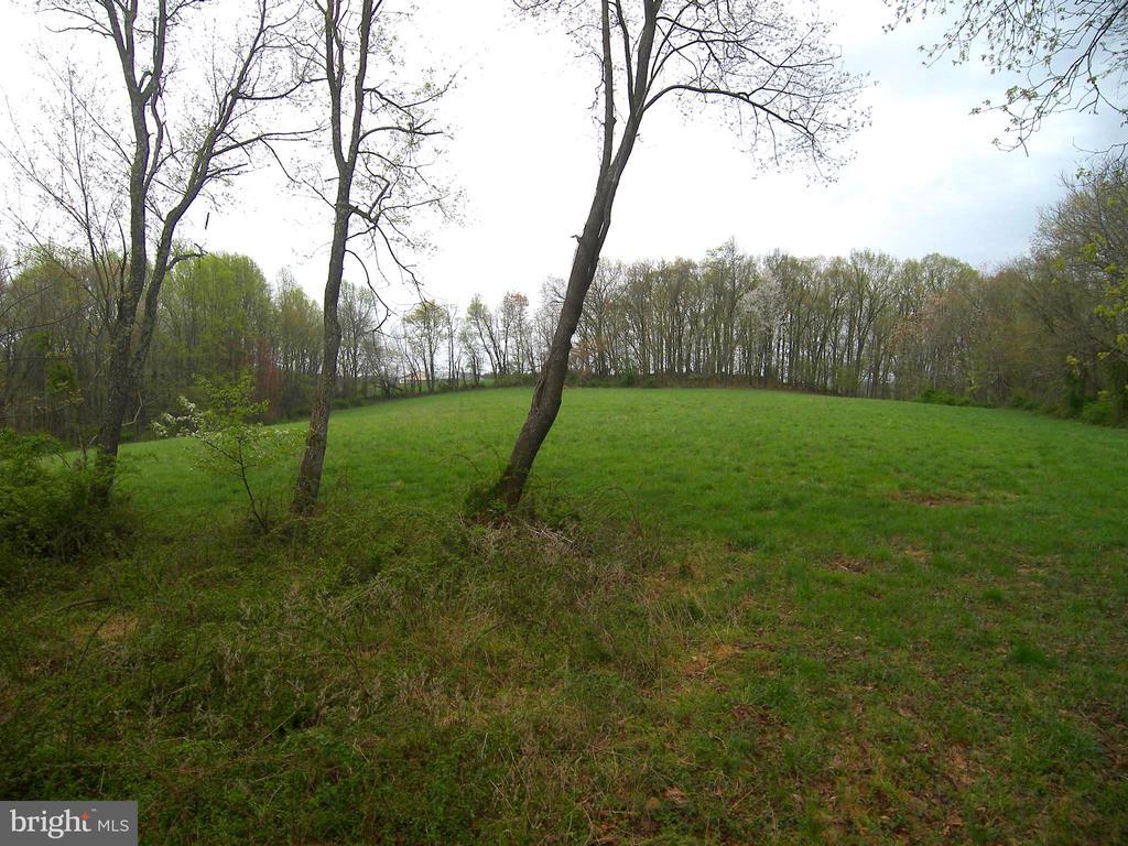 The High Meadow - 14515 SHIRLEY BOHN RD, MOUNT AIRY