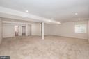Basement2 - 22525 WILLINGTON SQ, ASHBURN