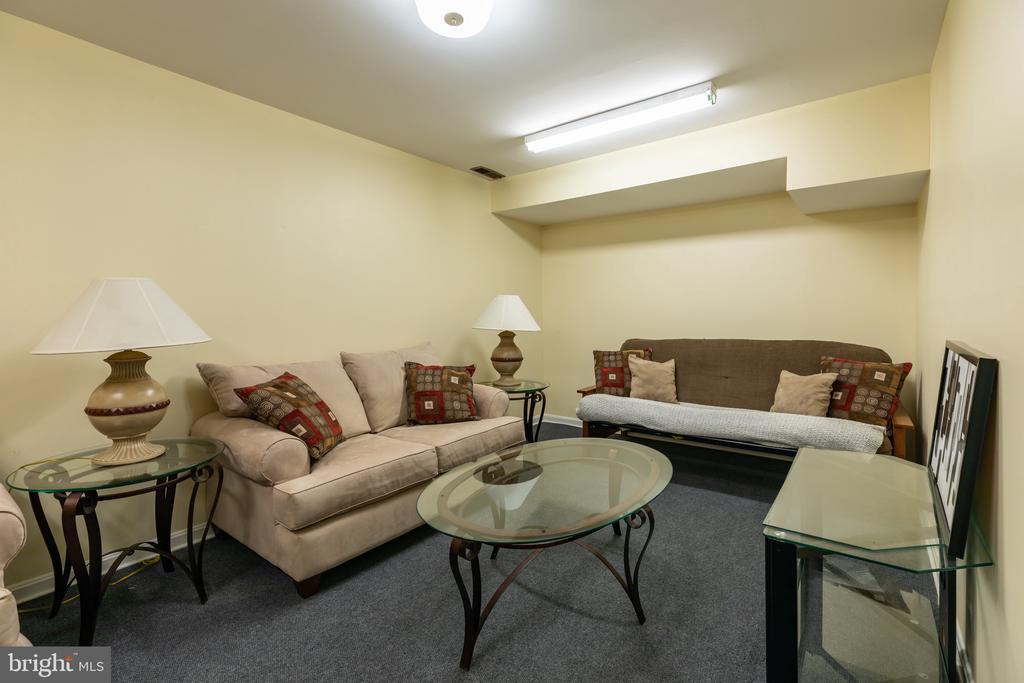 Basement Rec. Room - 2309 N SIBLEY ST, ALEXANDRIA