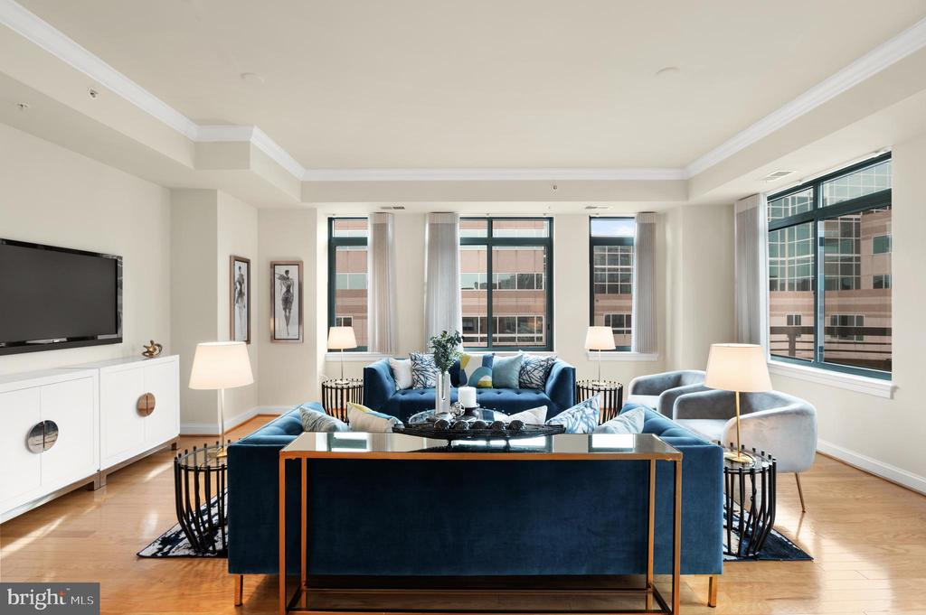 9' Ceilings and extra large windows and doors - 3625 10TH ST N #903, ARLINGTON