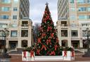 RTC Holiday Tree - 11990 MARKET ST #415, RESTON