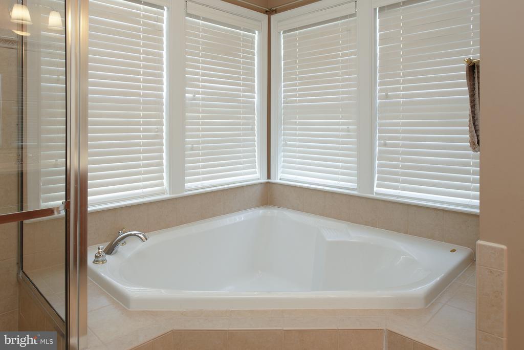 Primary Bath - 22028 AVONWORTH SQ, BROADLANDS