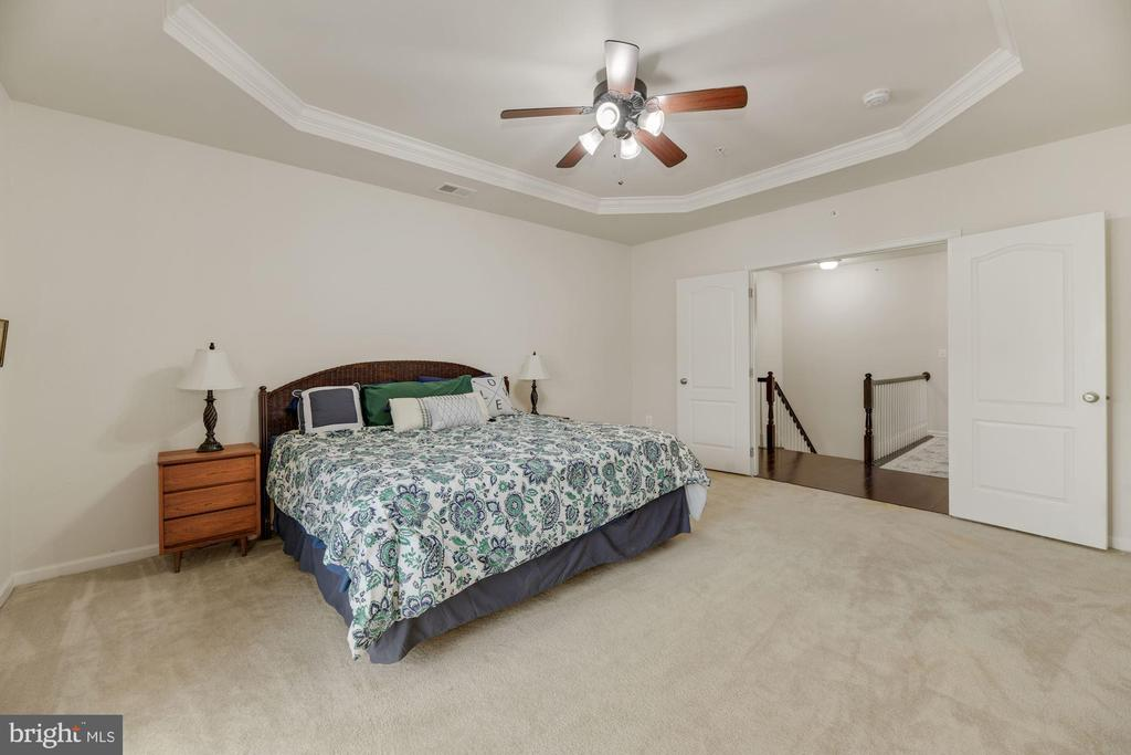 Primary Bedroom - Double French Doors Lead You In! - 43213 THOROUGHFARE GAP TER, ASHBURN