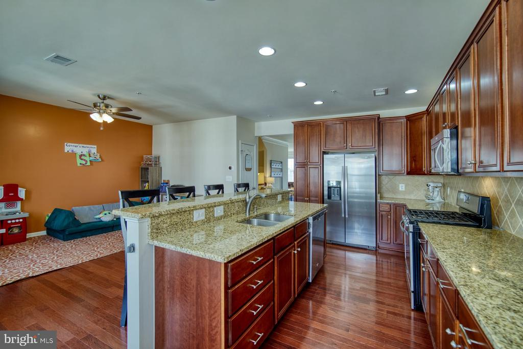 Granite Countertops & Stainless Steel Appliances - 43015 CLARKS MILL TER, ASHBURN
