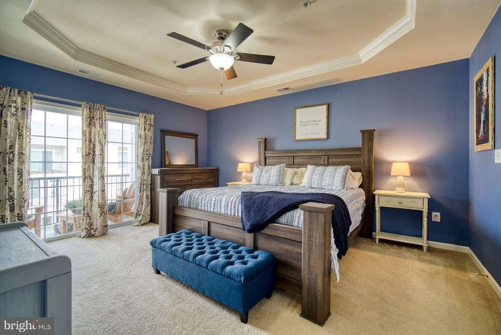 Beautiful Primary Bedroom with Balcony - 43015 CLARKS MILL TER, ASHBURN