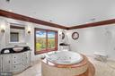 The Owners' Spa Bath - 612 RIVERCREST DR, MCLEAN