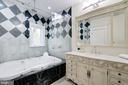 Sumptuous Guest Bath - 612 RIVERCREST DR, MCLEAN