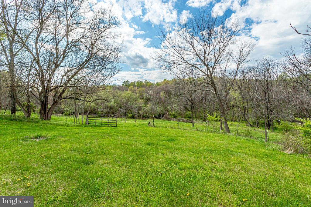 A wonderful blend of Open & trees - 19525 TELEGRAPH SPRINGS RD, PURCELLVILLE