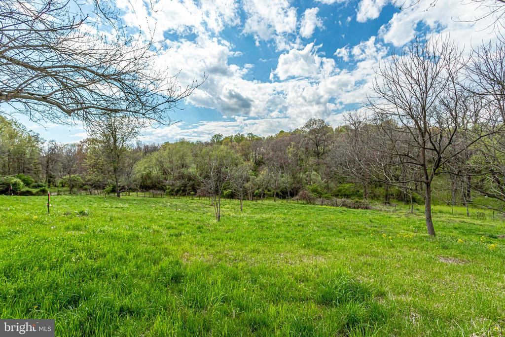 More views - 19525 TELEGRAPH SPRINGS RD, PURCELLVILLE