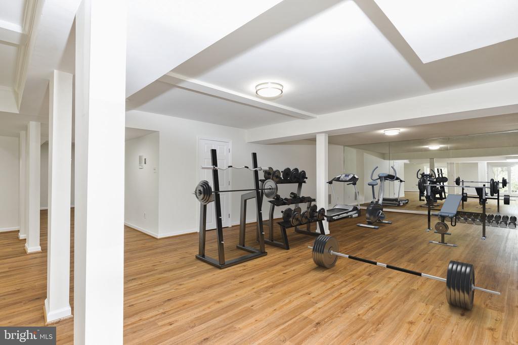Lower Level Gym Area - 2405 OAKMONT CT, OAKTON