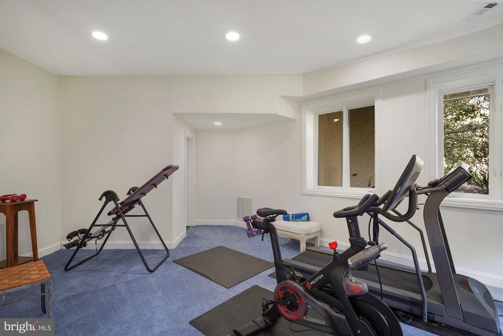 Lower Level Fitness Area - 9211 BLACK RIFFLES CT, GREAT FALLS