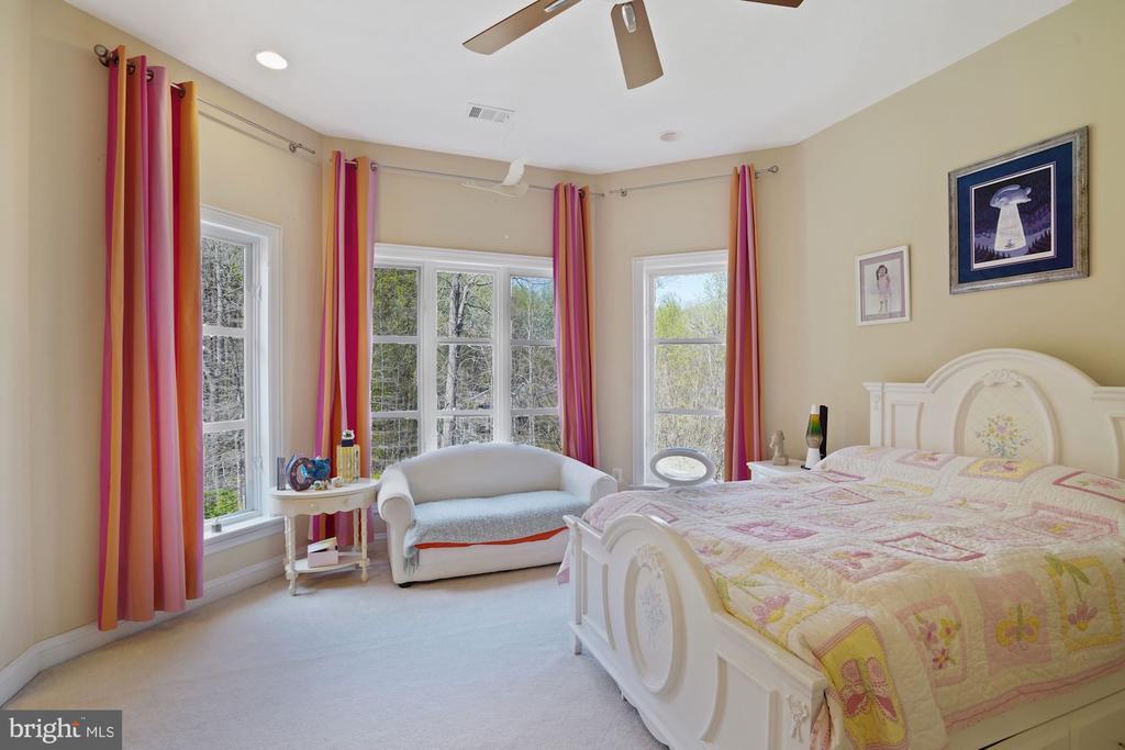 Bedroom #2 - 9211 BLACK RIFFLES CT, GREAT FALLS