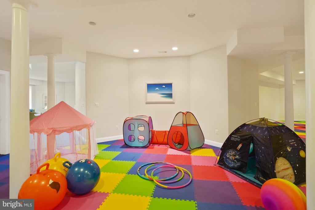 Huge Lower Level Recreation Room - 9211 BLACK RIFFLES CT, GREAT FALLS