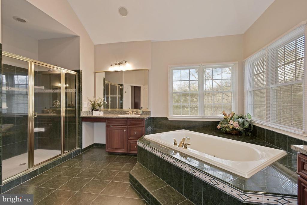 Luxurious Master Bath with Shower - 19582 SARATOGA SPRINGS PL, ASHBURN