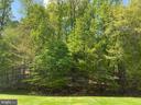 Back yard - 3709 FIDELIS CT, TRIANGLE