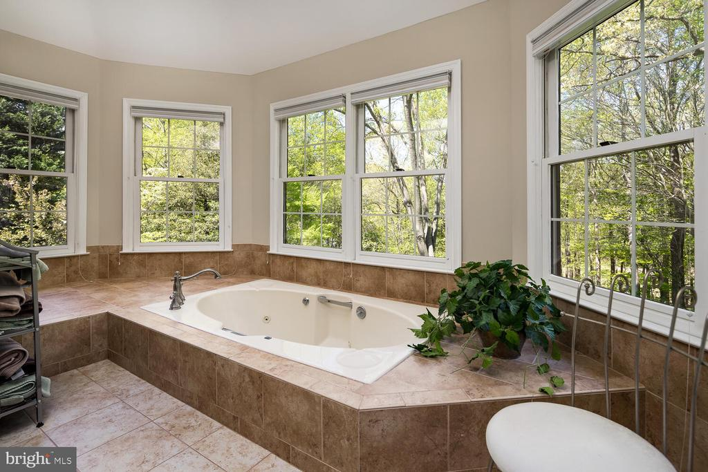 Raised Whirlpool Soaking Tub Surrounded by Windows - 10654 CANTERBERRY RD, FAIRFAX STATION
